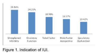Outcome of Intra Uterine Insemination in Sahara International Fertility Centre